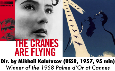 cranes are flying